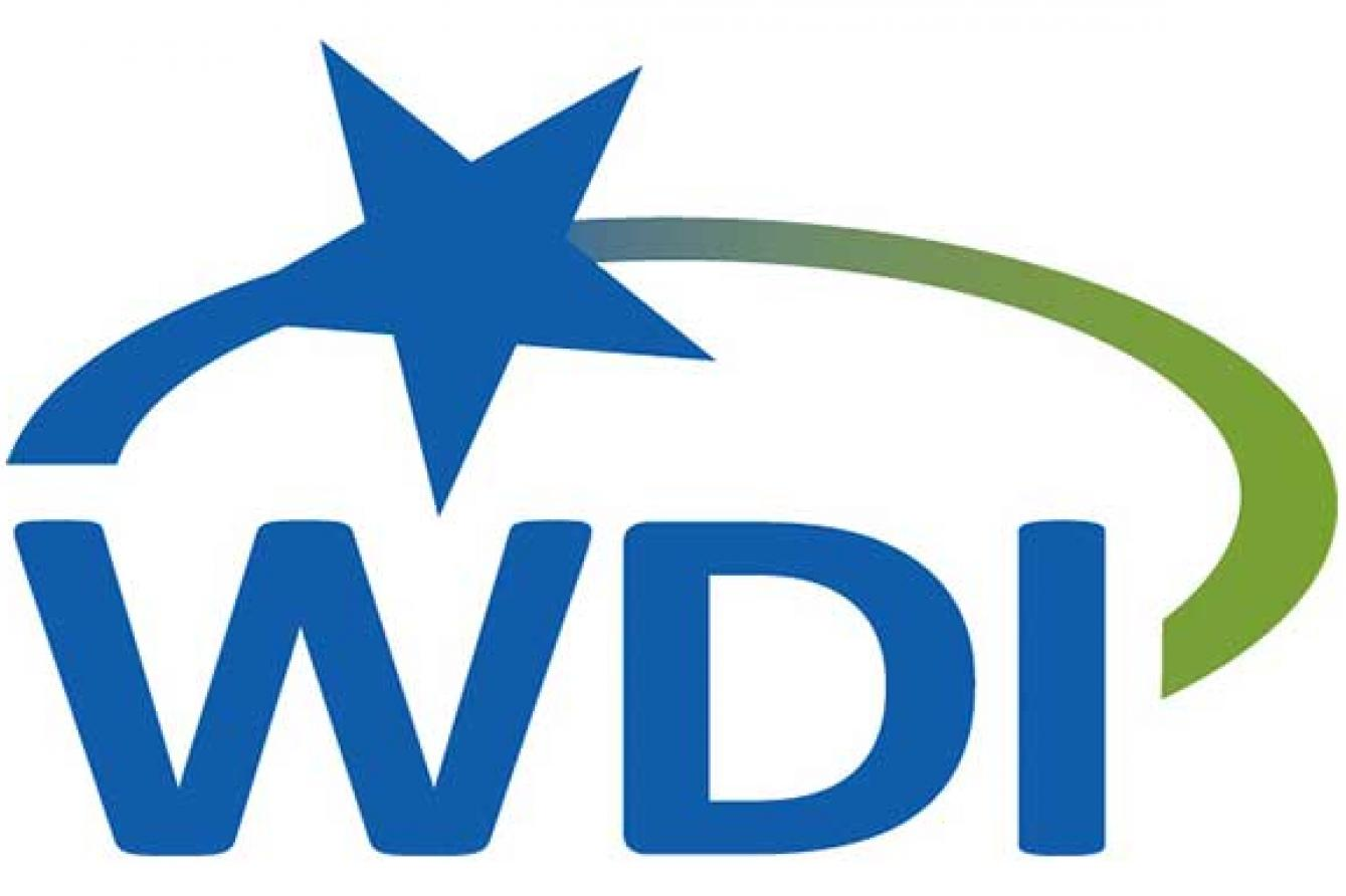 Workforce Development Institute -